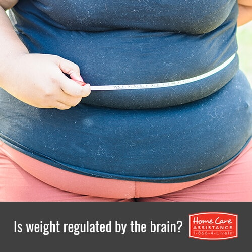 How Does the Brain Regulate Weight in Sacramento, CA?