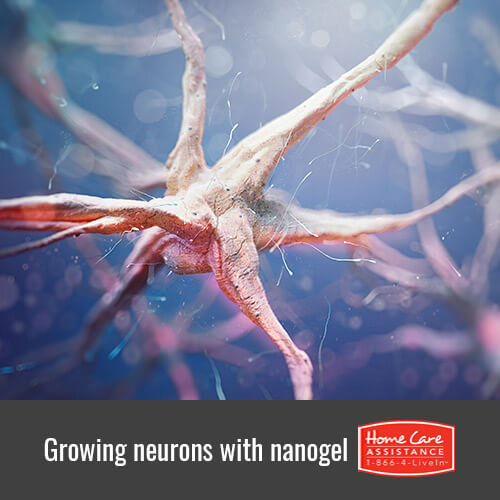 How Nanogel Generates New Neurons in Sacramento, CA